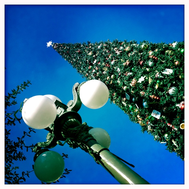 Christmas @ Disney California Adventure by 2 Miss Mouses