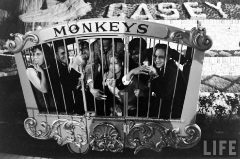 Riding in the Monkey Cage on Casey Jr. photo by Ralph Crane