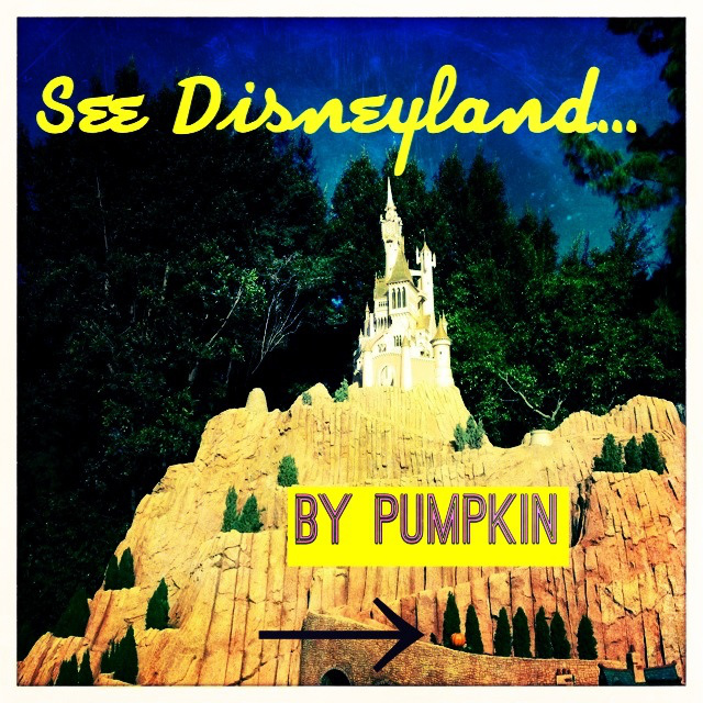 See Disneyland by Pumpkin by 2 Miss Mouses